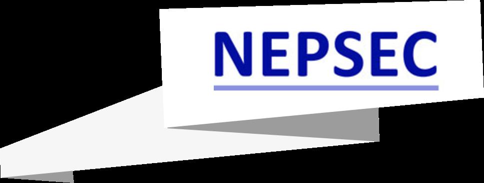 Nepsec NHS Logo